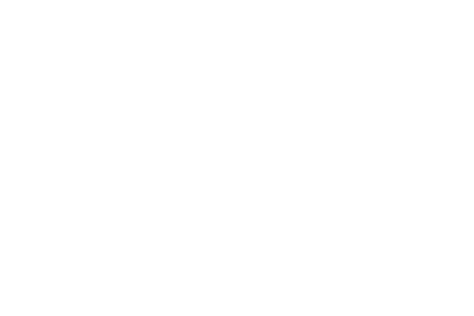 Chapter Leader FAQ's